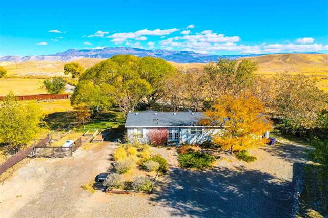 184 32 Road, Grand Junction, CO 81503 (MLS #20195976) :: The Christi Reece Group