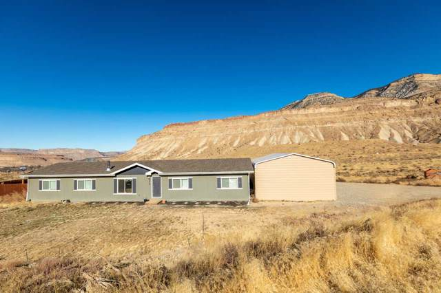 574 39 Road, Palisade, CO 81526 (MLS #20196059) :: The Danny Kuta Team