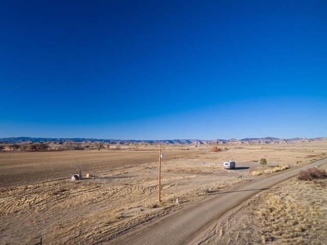 1935 6 1/2 Road, Mack, CO 81525 (MLS #20196595) :: The Danny Kuta Team