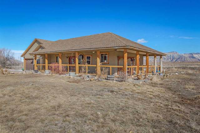 2172 45 1/2 Road, De Beque, CO 81630 (MLS #20200481) :: The Grand Junction Group with Keller Williams Colorado West LLC