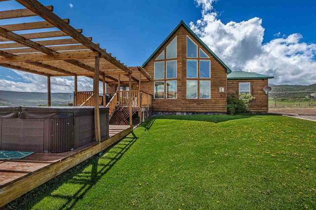 9557 County Road 320, Rifle, CO 81650 (MLS #20200718) :: The Christi Reece Group