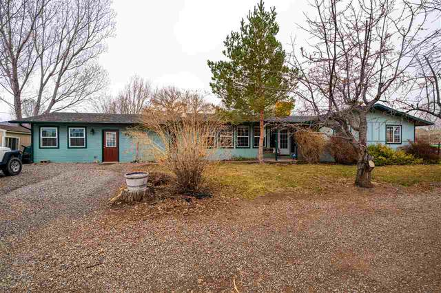 532 35 1/2 Road, Palisade, CO 81526 (MLS #20201236) :: The Christi Reece Group