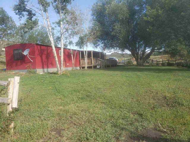 20 County Road 209, Craig, CO 81625 (MLS #20201514) :: The Kimbrough Team | RE/MAX 4000