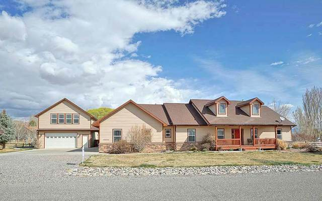 59355 Lotus Court, Montrose, CO 81403 (MLS #20201567) :: The Kimbrough Team | RE/MAX 4000