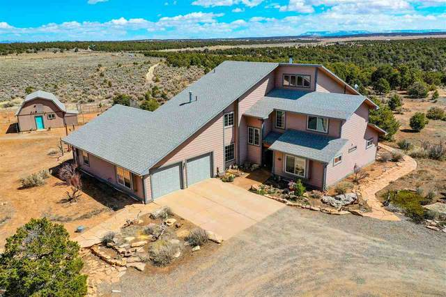 13741 Sage Brush Lane, Glade Park, CO 81523 (MLS #20201616) :: The Christi Reece Group