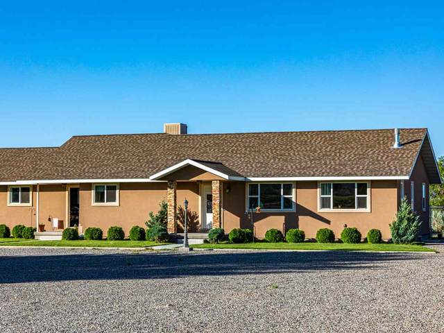 11309 Running Deer Road, Eckert, CO 81418 (MLS #20201822) :: The Kimbrough Team | RE/MAX 4000
