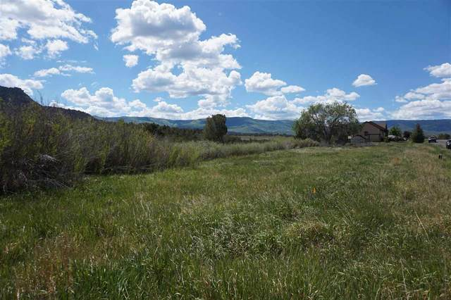 14650 N Ouray Court, Collbran, CO 81624 (MLS #20201978) :: Michelle Ritter
