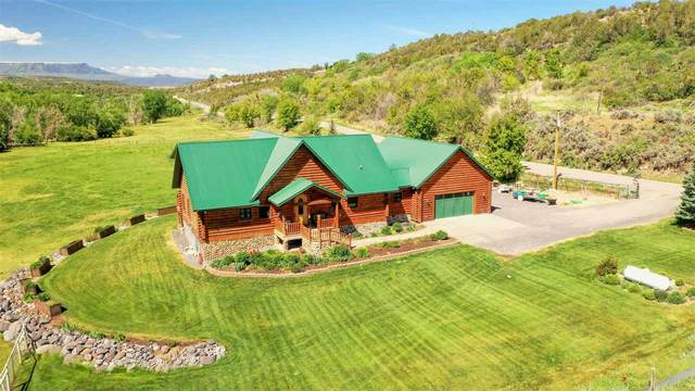 58857 Buzzard Creek Road, Collbran, CO 81624 (MLS #20202513) :: The Grand Junction Group with Keller Williams Colorado West LLC