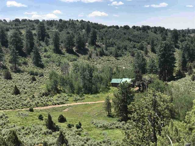 6501 Uncompahgre Divide Road, Whitewater, CO 81527 (MLS #20202597) :: The Grand Junction Group with Keller Williams Colorado West LLC