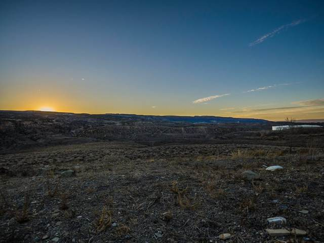 197 River Ridge Drive, Grand Junction, CO 81503 (MLS #20202710) :: Western Slope Real Estate