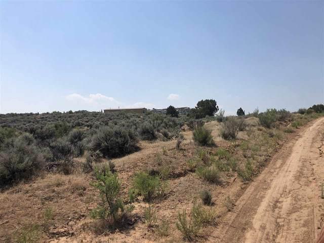 4530 Horse Canyon Road, De Beque, CO 81630 (MLS #20202864) :: The Christi Reece Group