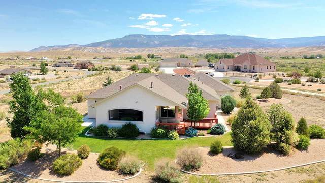 6211 La Paloma Court, Whitewater, CO 81527 (MLS #20202911) :: The Grand Junction Group with Keller Williams Colorado West LLC