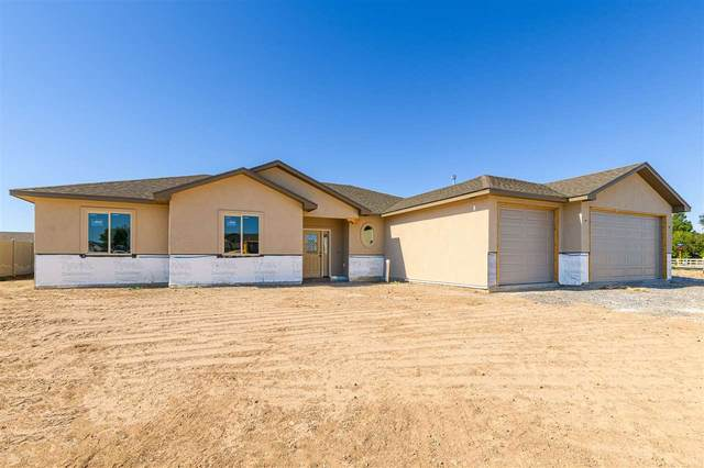1410 Limber Pine Street, Fruita, CO 81521 (MLS #20203057) :: The Christi Reece Group