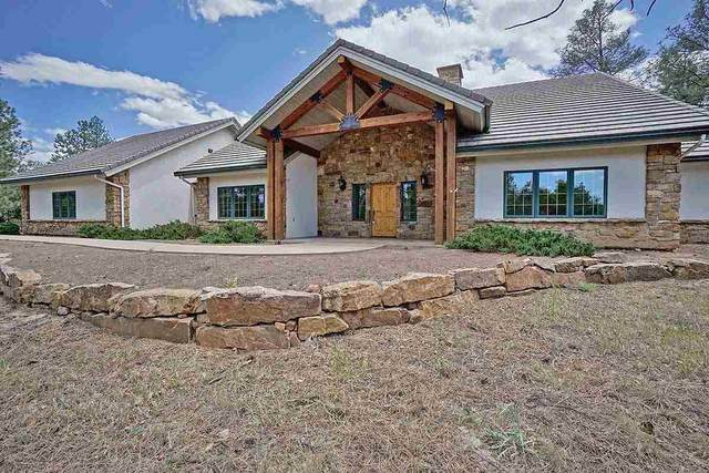 98 Bear Cub Drive, Ridgway, CO 81432 (MLS #20203122) :: The Christi Reece Group