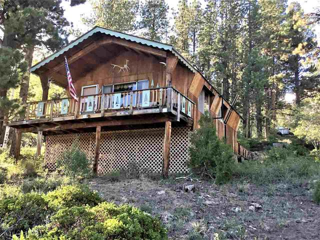 17805 Ponderosa Glade Road, Glade Park, CO 81523 (MLS #20203409) :: The Kimbrough Team | RE/MAX 4000