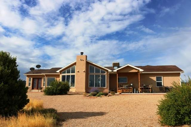 21650 Rough Canyon Road, Grand Junction, CO 81507 (MLS #20203634) :: The Danny Kuta Team