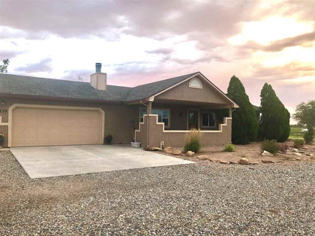 1232 O Road, Loma, CO 81524 (MLS #20203645) :: The Christi Reece Group