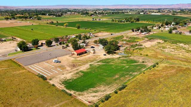1064 19 1/2 Road, Fruita, CO 81521 (MLS #20204460) :: The Danny Kuta Team