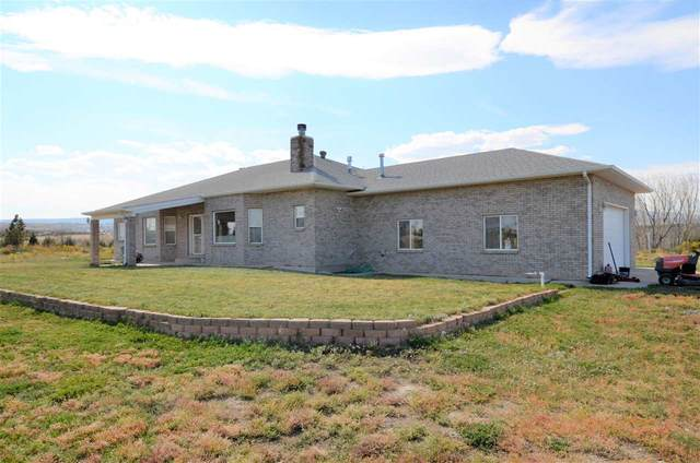 644 Bean Ranch Road, Whitewater, CO 81527 (MLS #20205140) :: The Danny Kuta Team