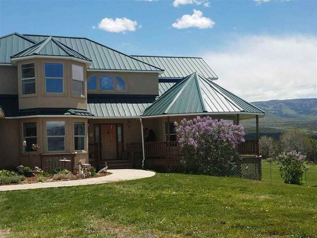 56960 Me Road, Collbran, CO 81624 (MLS #20205526) :: The Grand Junction Group with Keller Williams Colorado West LLC