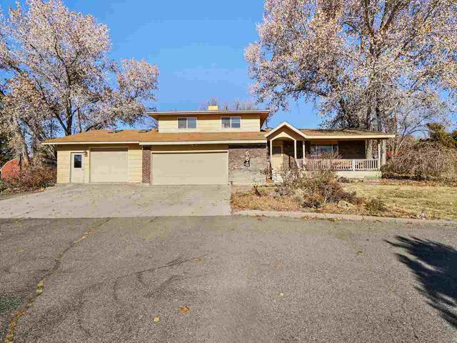 684 Glen Caro Drive, Grand Junction, CO 81506 (MLS #20205631) :: CENTURY 21 CapRock Real Estate
