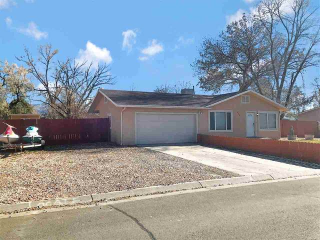 464 Appaloosa Lane, Grand Junction, CO 81504 (MLS #20205671) :: The Danny Kuta Team