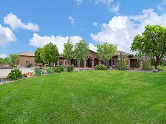 680 Curecanti Circle, Grand Junction, CO 81507 (MLS #20205842) :: Western Slope Real Estate