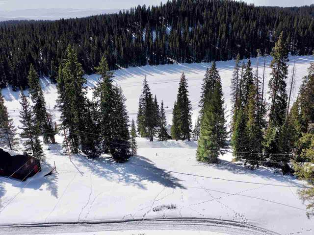TBD Hilltop Drive, Cedaredge, CO 81413 (MLS #20206150) :: Western Slope Real Estate