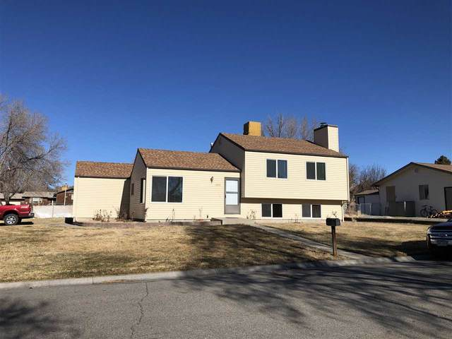 3090 Cedar Drive, Grand Junction, CO 81504 (MLS #20206205) :: The Kimbrough Team | RE/MAX 4000