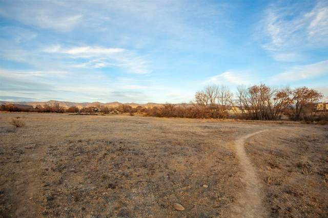 905 25 3/4 Road, Grand Junction, CO 81506 (MLS #20210258) :: Western Slope Real Estate