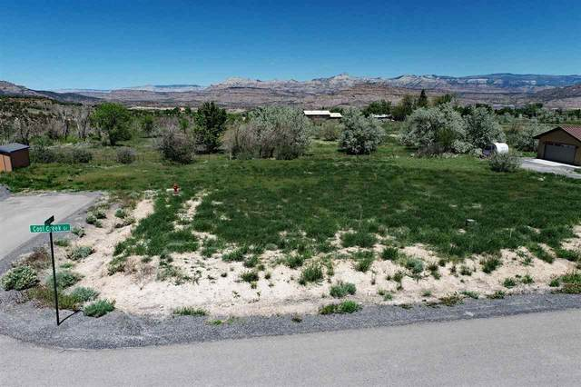 10600 Foxcross Lane, Mesa, CO 81643 (MLS #20210350) :: Michelle Ritter