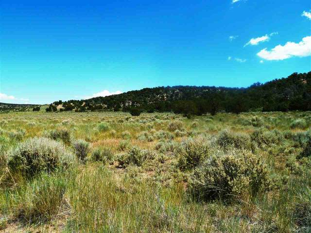 Lot 54 Masters Ranch Drive, Glade Park, CO 81523 (MLS #20210554) :: The Danny Kuta Team