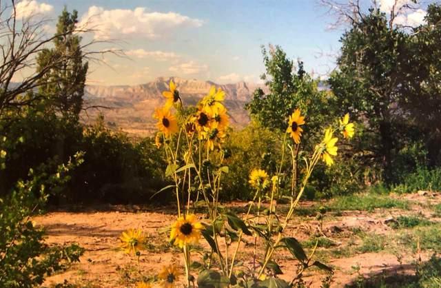 944 48 1/2 Road, Mesa, CO 81643 (MLS #20210643) :: CENTURY 21 CapRock Real Estate