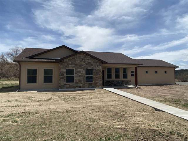 300 SE Sandstone Court, Cedaredge, CO 81413 (MLS #20210802) :: CENTURY 21 CapRock Real Estate
