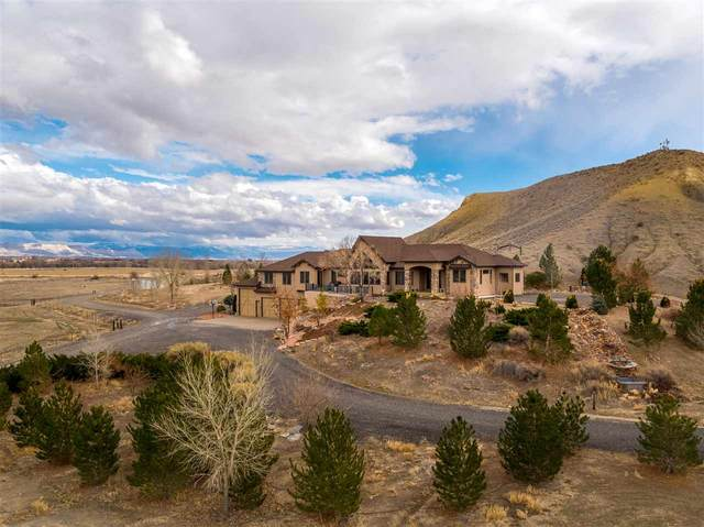 1468 16 Road, Loma, CO 81524 (MLS #20211155) :: The Christi Reece Group
