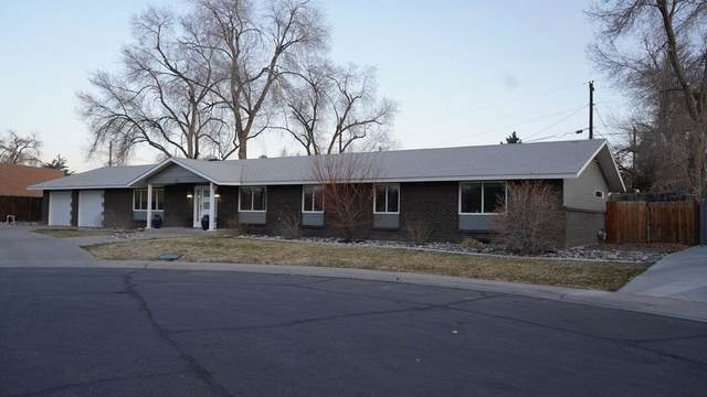 391 Mcfarland Court, Grand Junction, CO 81501 (MLS #20211246) :: The Kimbrough Team | RE/MAX 4000