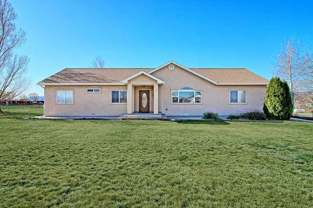 1365 M Road, Loma, CO 81524 (MLS #20211459) :: The Christi Reece Group