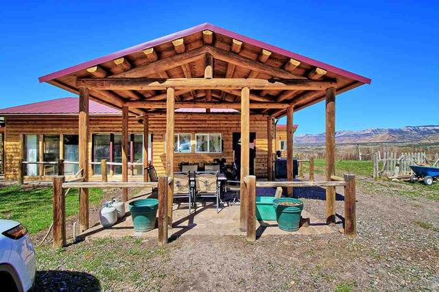 15223 59 1/2 Road, Collbran, CO 81624 (MLS #20211884) :: The Kimbrough Team | RE/MAX 4000