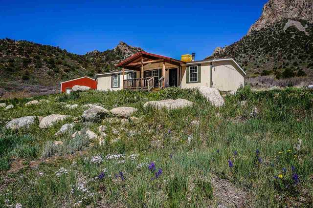 26600 Highway 141, Whitewater, CO 81527 (MLS #20212366) :: The Kimbrough Team | RE/MAX 4000