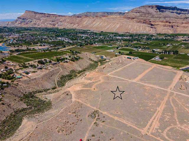 656 39 Road, Palisade, CO 81526 (MLS #20212532) :: The Christi Reece Group