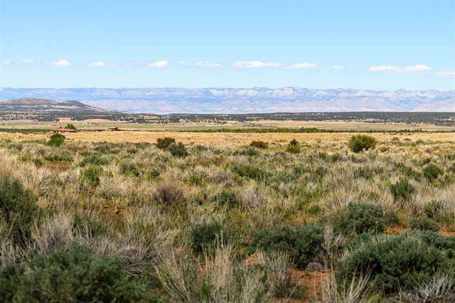 TBD Masters Ranch Drive, Glade Park, CO 81523 (MLS #20212603) :: The Kimbrough Team | RE/MAX 4000