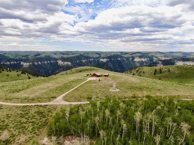 TBD Douglas Pass Road, De Beque, CO 81630 (MLS #20212607) :: Lifestyle Living Real Estate