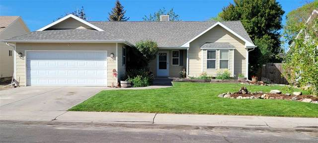 1928 Ouray Drive, Montrose, CO 81401 (MLS #20212703) :: The Joe Reed Team
