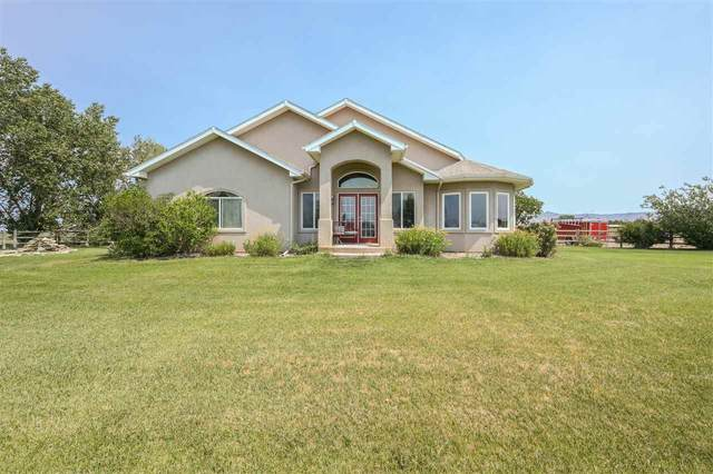 1146 1/2 23 Road, Grand Junction, CO 81505 (MLS #20212880) :: The Kimbrough Team | RE/MAX 4000