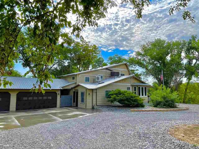 101 Canary Lane, Grand Junction, CO 81507 (MLS #20213505) :: The Kimbrough Team | RE/MAX 4000