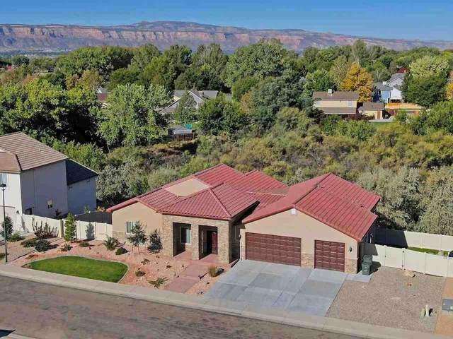 731 Beaver Lodge, Grand Junction, CO 81505 (MLS #20213674) :: CENTURY 21 CapRock Real Estate