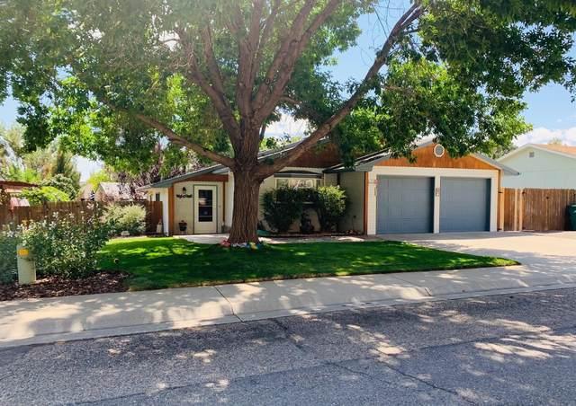 567 Milleman Street, Palisade, CO 81526 (MLS #20214412) :: Lifestyle Living Real Estate