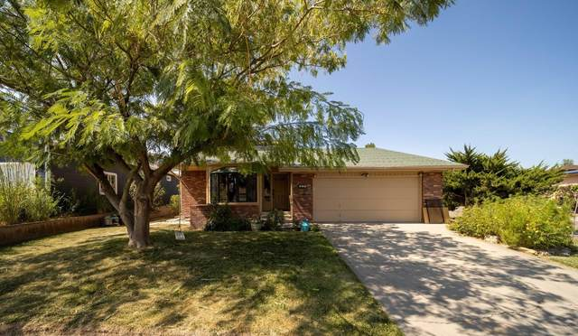 405 Rana Court, Grand Junction, CO 81507 (MLS #20214806) :: The Kimbrough Team | RE/MAX 4000