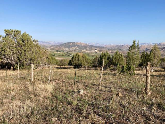 TBD Eagles Way, Mesa, CO 81643 (MLS #20214998) :: The Joe Reed Team