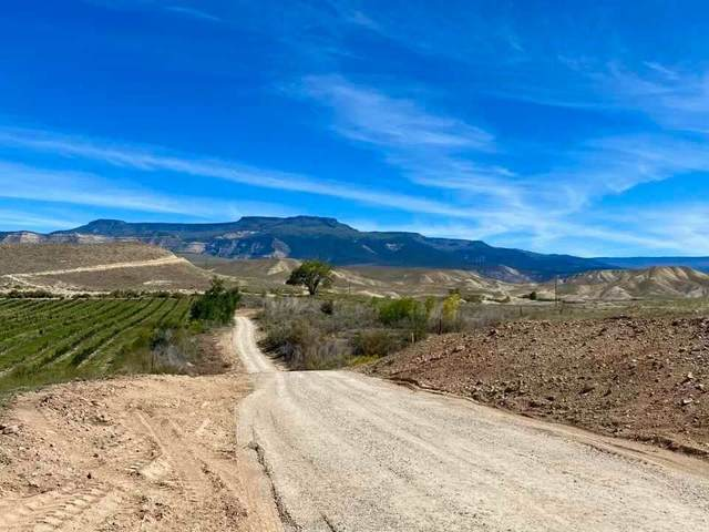440 35 Road, Palisade, CO 81526 (MLS #20215072) :: The Christi Reece Group